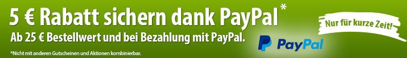 paypal_banner_lp_neu.png